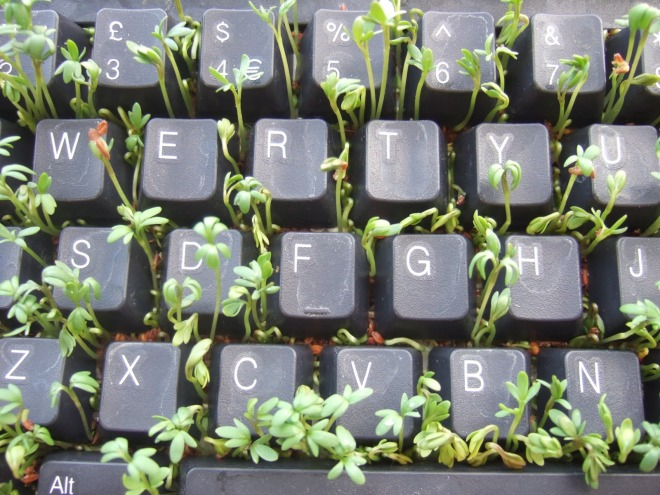 writing life.jpg