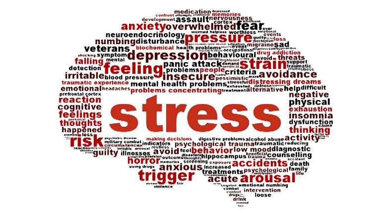 Stressed-Brain